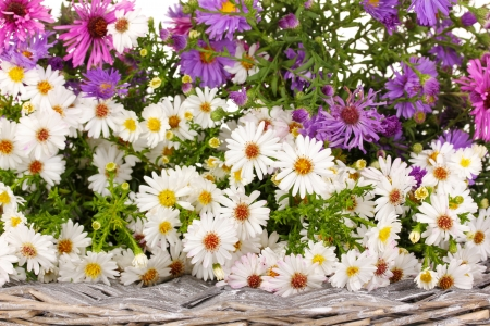 beautiful bouquet of bright flowers on wicker mat isolated on white photo
