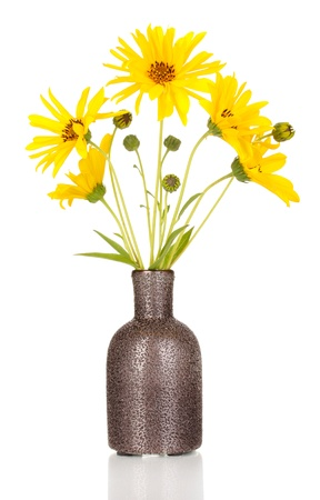 beautiful yellow flowers in vase isolated on white photo