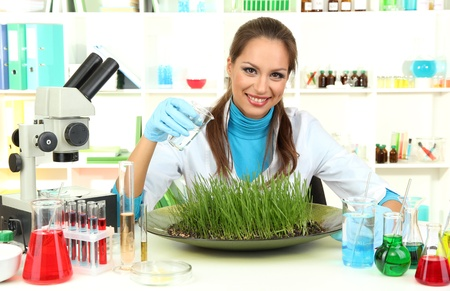 Young female scientist is conducting experiments with plants in  laboratory  Stock Photo - 17131844