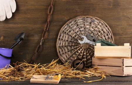 Mousetrap with a piece of cheese in a barn on wooden background Stock Photo - 16493173