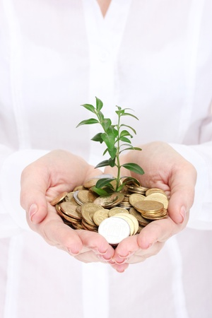 Woman hands with coins and plant photo