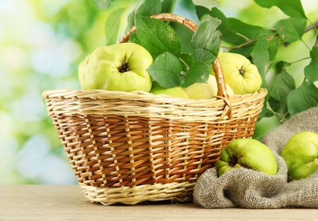sweet quinces with leaves in basket, on green background Stock Photo - 16479654