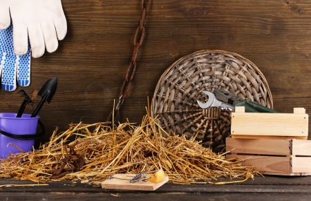 Mousetrap with a piece of cheese in barn on wooden background Stock Photo - 16566273