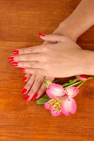 woman hands  with flower on wooden background photo