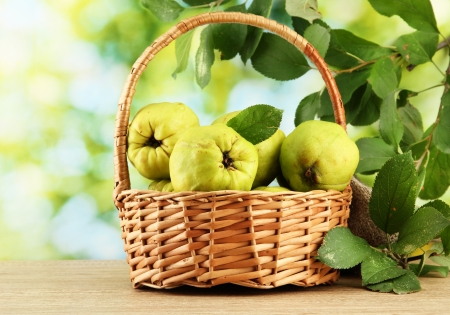 sweet quinces with leaves in basket, on green background Stock Photo - 16590758