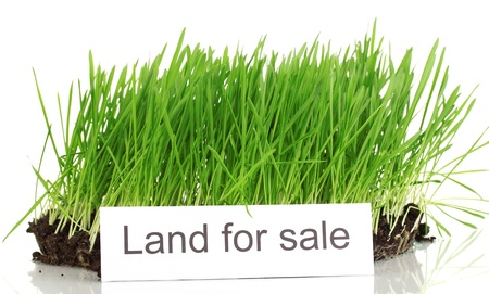 yard sale: Green grass with ground as concept of land sale isolated on white Stock Photo