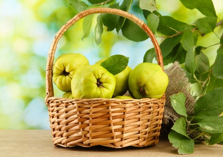 sweet quinces with leaves in basket, on green background Stock Photo - 16670290