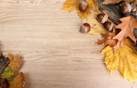 brown acorns on autumn leaves, on wooden background Stock Photo - 16671262
