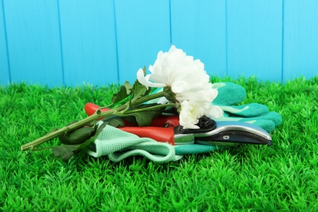 Secateurs with flower on grass on fence background Stock Photo - 16670663