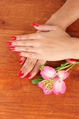handcare: woman hands  with flower on wooden background