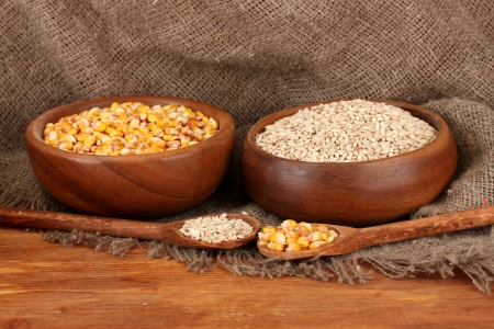 Raw corn and wheat in wooden bowls on table on sackcloth  background photo