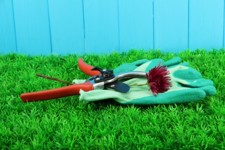 Secateurs with flower on grass on fence background Stock Photo - 16738792