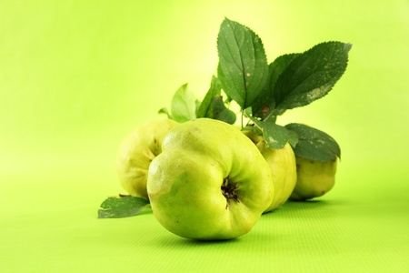 quinces: sweet quinces with leaves, on green background