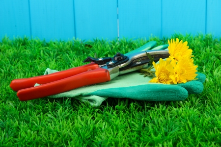 Secateurs with flower on grass on fence background Stock Photo - 16788941