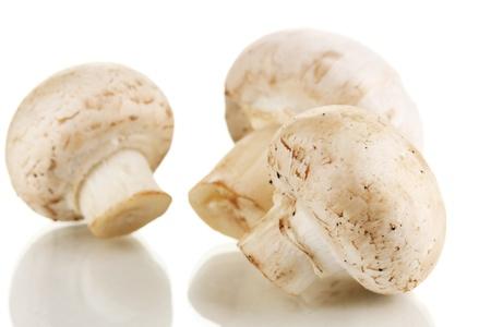 agaricus: Fresh mushrooms isolated on white