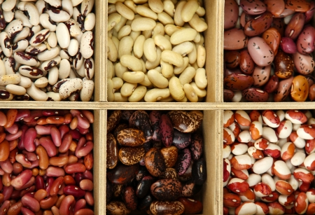 Diverse beans in wooden box sections close-up Stock Photo - 16805724