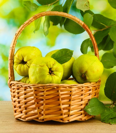 sweet quinces with leaves in basket, on green background Stock Photo - 16865191