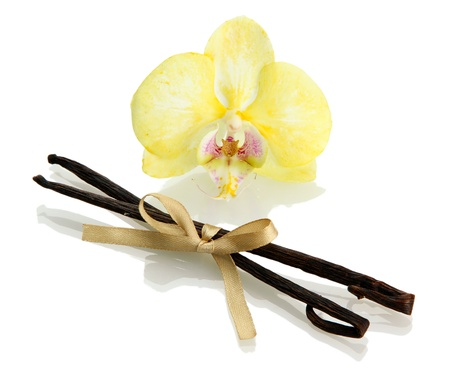 Vanilla pods with flower isolated on white Stock Photo - 16941593