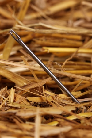 Needle in a haystack close-up Stock Photo - 16914212