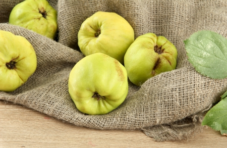 quinces: sweet quinces with leaves, on burlap