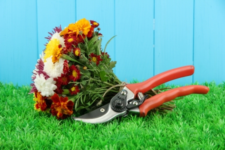 Secateurs with flowers on wooden background photo