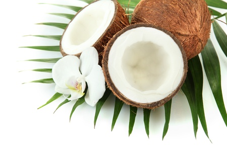 Coconuts with leaves and flower, isolated on white Stock Photo - 17000351