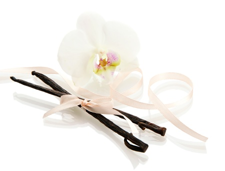Vanilla pods with flower isolated on white Stock Photo - 17020079