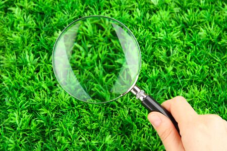magnifying glass in hand on green grass Stock Photo - 17048371