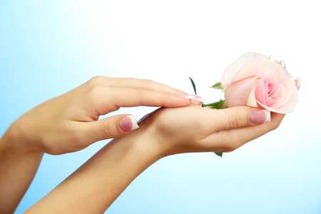 Beautiful woman hands with rose, on blue background Stock Photo - 17046972