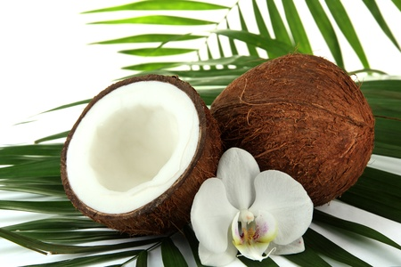 Coconuts with leaves and flower, close up Stock Photo - 17046844