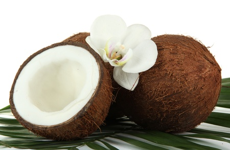 Coconuts with leaves and flower, isolated on white Stock Photo - 17054094