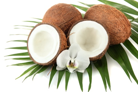 Coconuts with leaves and flower, isolated on white Stock Photo - 17054289