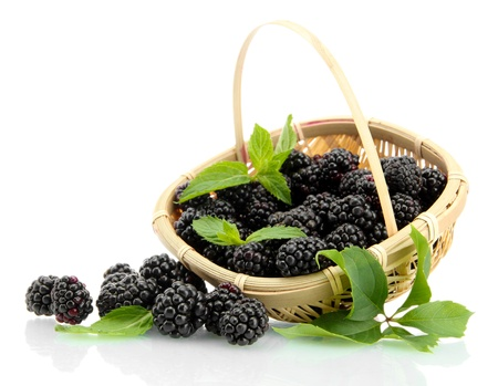 beautiful blackberries with leaves in basket isolated on white photo