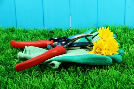 Secateurs with flower on grass on fence background Stock Photo - 17138364