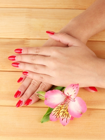 woman hands  with flower on wooden background Stock Photo - 17139177