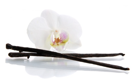 Vanilla pods with flower isolated on white photo