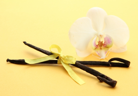 Vanilla pods with flower, on yellow background photo