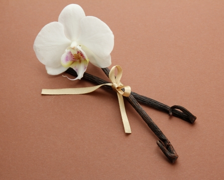 Vanilla pods with flower, on brown background photo