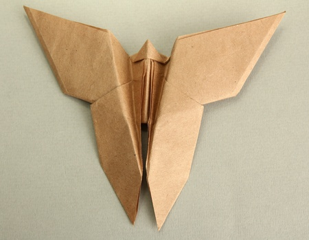 Origami butterfly on grey background photo