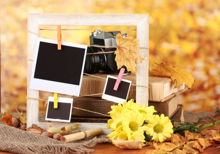Autumnal composition with flowers, photo cards, wooden frame on bright background Stock Photo - 17265840
