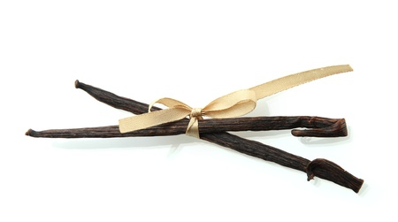 Vanilla pods isolated on white photo