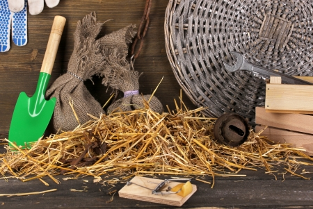 Mousetrap with a piece of cheese in barn on wooden background Stock Photo - 17404117