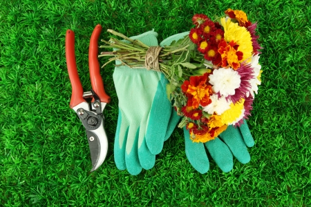 Secateurs with flowers on green grass background photo