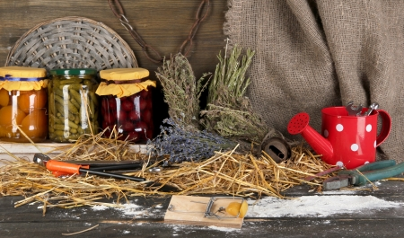 Mousetrap with a piece of cheese in barn on wooden background Stock Photo - 17459563