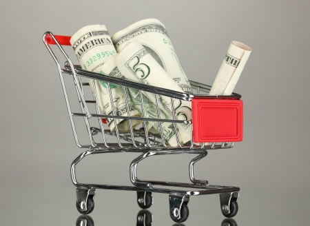 Money in cart on grey background Stock Photo - 17526471