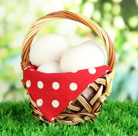 Many eggs in basket on grass on bright background Stock Photo - 17644171