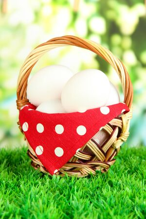 Many eggs in basket on grass on bright background Stock Photo - 17634096