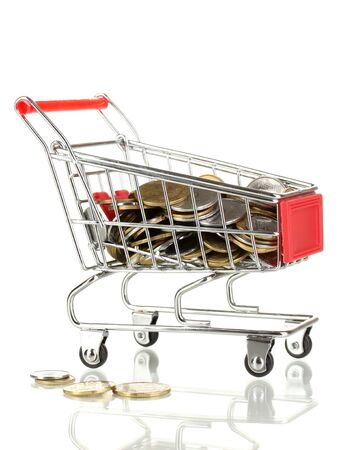 Money in cart isolated on white Stock Photo - 17649038