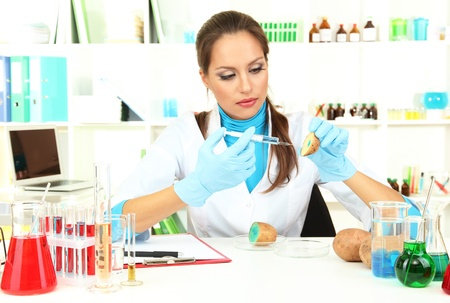 Young female scientist injecting GMO into   potato in  laboratory  photo