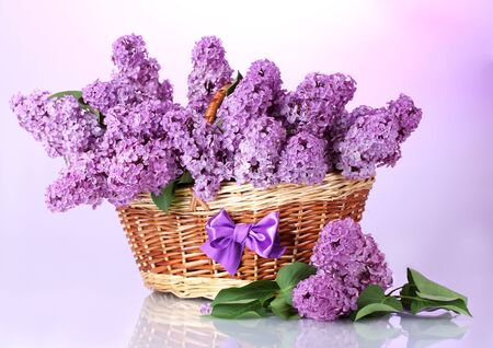 beautiful lilac flowers in basket on purple background Stock Photo - 17770170